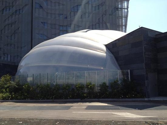 Light Structure ETFE Multipurpose Covering
